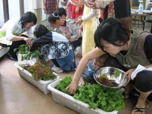 栽培体験型料理教室