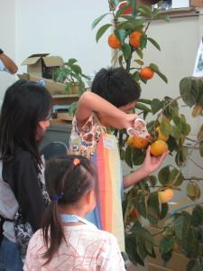スローフード 柿