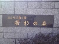 須恵町運動公園 若杉の森