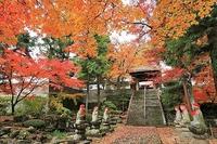 千曲市龍洞院の紅葉