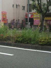びっくりランド190円