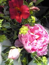 信濃の春。の花束