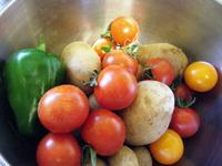 自家栽培の野菜♪