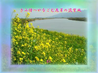 フォト575rz1603『 きみ待つやなごむ花芽の筑紫風 』