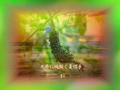 フォト575『 9条に魂預く夏帽子 』zt2401