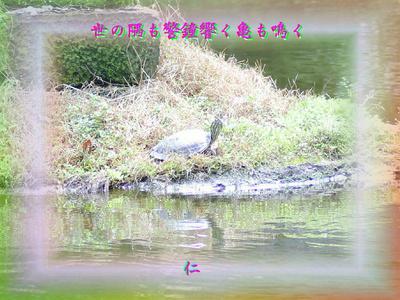『 世の隅も警鐘響く亀も鳴く 』平和の砦575交心zrx1201