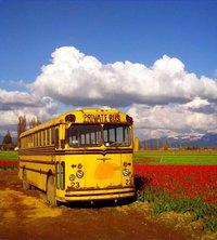 趕公交車的人生