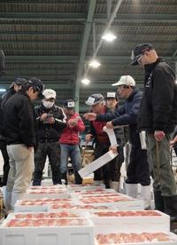 柳川の筑後中部魚市場でセリ見学!