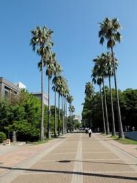 鹿児島大学へ。