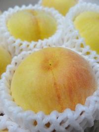 岡山の黄桃。