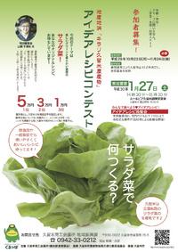 サラダ菜で何つくる?
