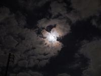 今夜はお月様がきれいです。