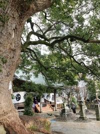 六所宮神社の十日恵比須大祭。