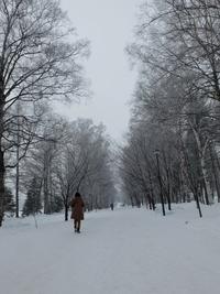 寒さを求めて緑ヶ丘公園へ。
