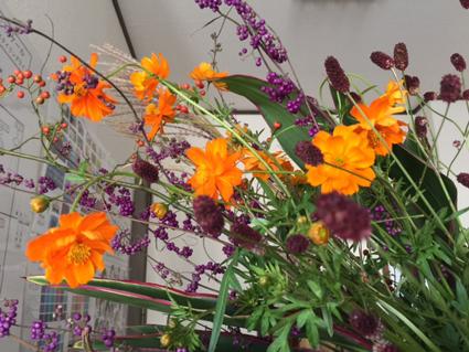autumn fukuoka color