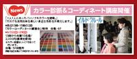 カラー診断が限定で2000円しかもカラー診断標準光を使用して