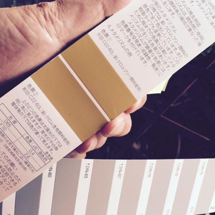 color kagoshima