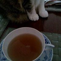 一緒にお茶タイム