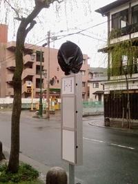 バス停が~