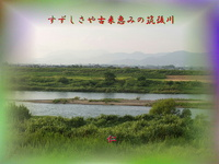 TAO575交心『 すずしさや古来恵みの筑後川 』