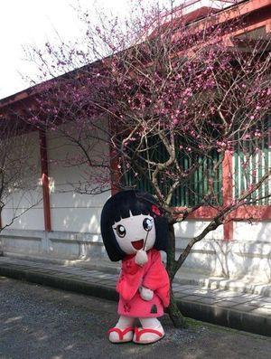 梅の花ー♪
