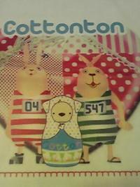 コットントン&ウサビッチ(^_-)-☆