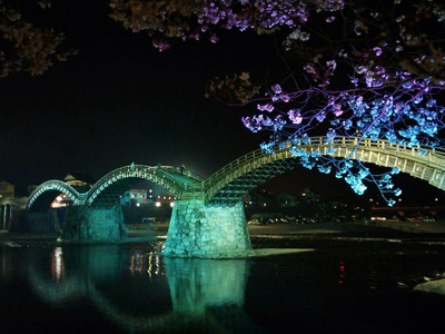 桜 錦帯橋