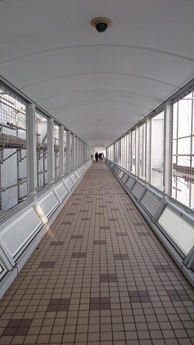 大鳴門橋 渦の道