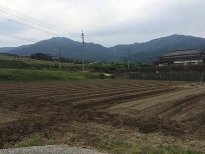 自然農法の体験農園