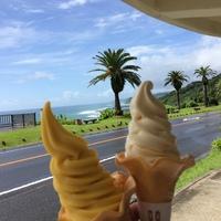 マンゴーと日向夏のソフトクリーム