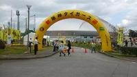 沖縄キャンプレポート2018:阪神タイガース編