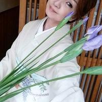 如月の名花 忘れじの wisteria (しだれ藤)