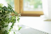 家の環境が悪いと体と心に悪影響を及ぼす