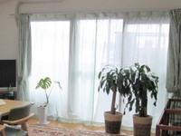 【リビング風水】定期的に窓、網戸の掃除をする