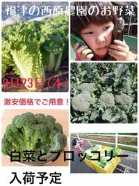 西原農園 (福津市)
