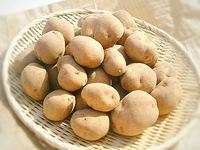美味しいジャガイモの選び方…その二
