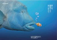 「恋する水族館」