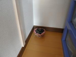 一日一風水 収納スペースに湿気は大敵! 湿気対策を