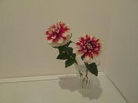 【風水トイレ】生花、観葉植物を飾る