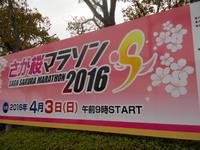 2016さが桜マラソン