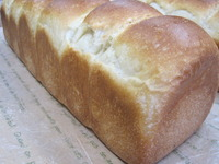幸せを運ぶパン?!
