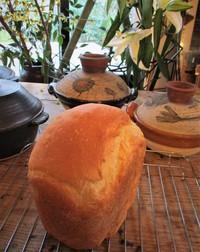 ファバラカフェ~手創りパン&米糠塩ケーキ♪ 20~22日はお休みです。