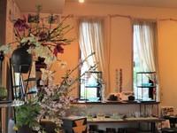 今日の庭の花&野鳥便り~「八重椿」&「ヒヨ」ちゃん♪