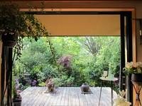 宿根草.のファバラカフェで♪緑をた~っぷり味わって下さ~い❤