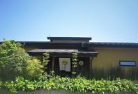 庭の花&鳥たより~「一重枝垂れ桜」見ごろ♪「陽光桜」「染井吉野」開花しましたよ♪
