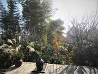 秋色の庭 & 30日は体幹講座