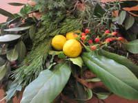 庭の仲間達で創る~Xmas&お正月飾り作りのワークショップ♪