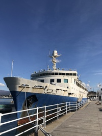 函館連絡船❣️♪︎.。゚+.(*・ω・*)ノ。
