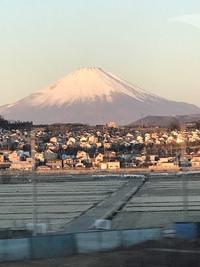 有馬・東京・京都の旅❣️(。^~^。)つづき〜〜