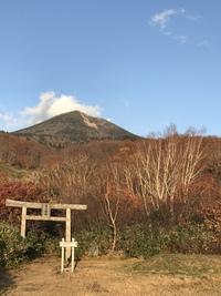 八甲田山の秋❣️(﹡ˆᴗˆ﹡)